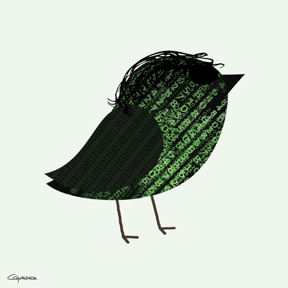 Neo Bird Nft Art