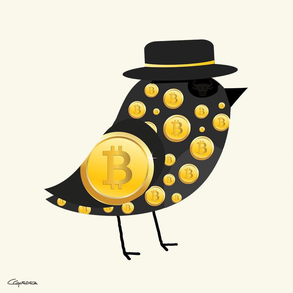 Phil Bird Nft Art